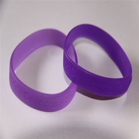 RDAQ Wristband Purple