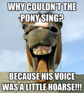Funny-Memes-about-Horses-8