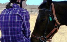 RDA North Qld - Horse Riding For Disabled 1