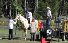 RDAQ Horse Riding 5