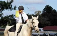RDAQ Horse Riding Activities